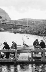 054. Polsk Fiskere